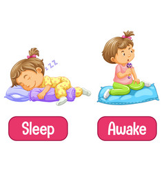 Opposite words with awake and sleep vector