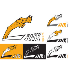 symbol lynx is jumping vector image