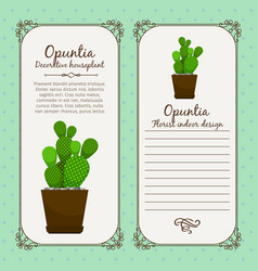 vintage label with opuntia plant vector image