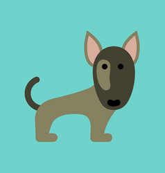 flat icon on background pet dog pitbull vector image vector image