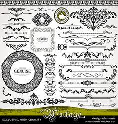 Vintage style design elements vector image vector image