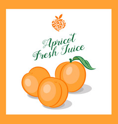 Apricot or peach juice sticker vector