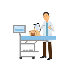Cheerful male veterinary doctor examining dog in vector