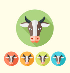 cow head flat round icons with long shadow vector image