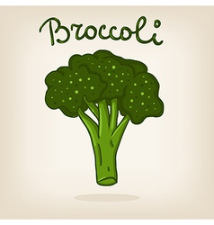 Cute of broccoli vector image