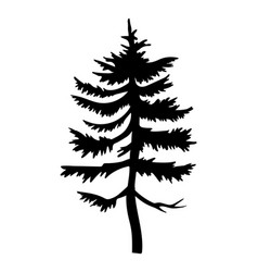 hight black pine silhouette fir-tree simple vector image