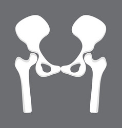 Hip icon radiography and x-ray concept vector