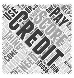 Improve Your Credit Score Word Cloud Concept vector