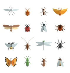 Insect Icon Flat vector