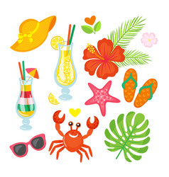 summer cocktails and plants crab and starfish vector image