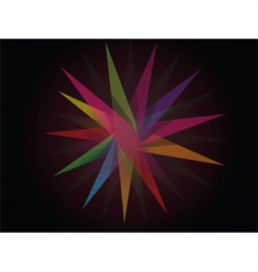colorful star vector image