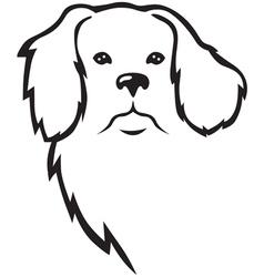 niuf dog head vector image