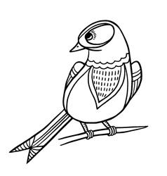 Sketch Bird vector image