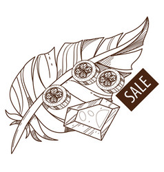 sale feather ruby and coins outline drawing for vector image vector image