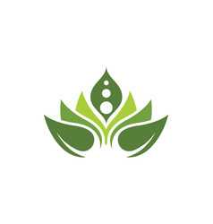 beauty lotus flower icon vector image