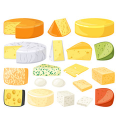 Cartoon cheese dairy products types cheddar vector