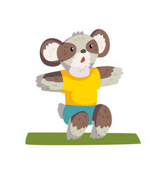 Cute coala bear doing squats wearing sports vector