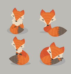 cute fox set in different poses vector image