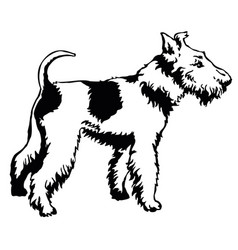 decorative standing portrait of dog fox terrier vector image