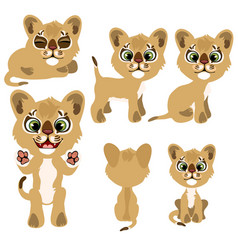Ginger kitty in different poses animal vector