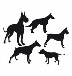 some dogs vector image