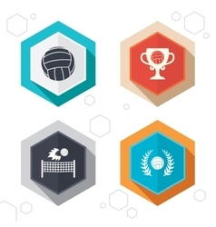 Volleyball and net icons Winner award cup vector image