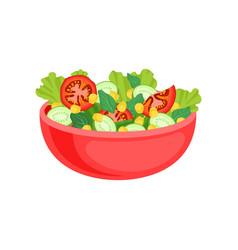 fresh vegetable salad in red ceramic bowl dish vector image