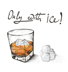 One glass with alcoholic drink and ice vector