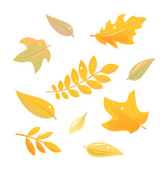 Set autumn leaves isolated vector