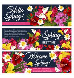 spring flower greeting banner of springtime design vector image