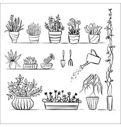 Pot plants and tools sketch vector image