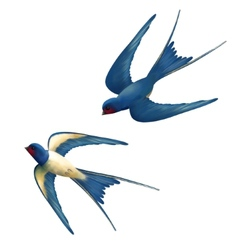 Flying Swallows vector image vector image