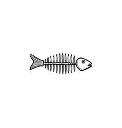 rotten fish skeleton with bones drawn sketch icon vector image
