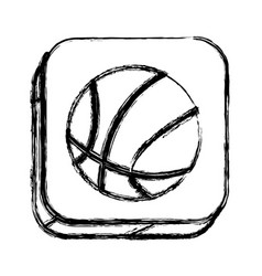 monochrome sketch of square button with basketball vector image vector image