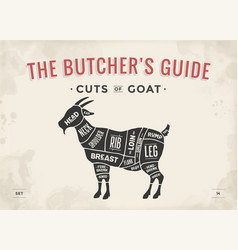 cut of meat set poster butcher diagram scheme - vector image