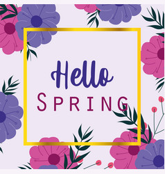 hello spring seasonal greeting card flowers frame vector image