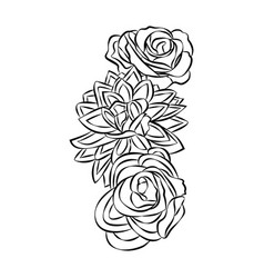 rose motif flower design elements on white vector image