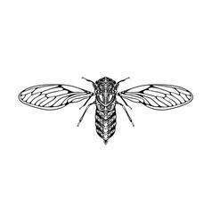 Small flies with entangle body vector