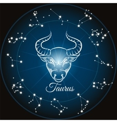 Zodiac sign taurus vector image