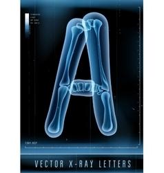 Blue 3D x ray style alphabet for vector