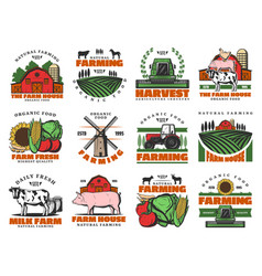 Cattle farm agriculture farming food products vector