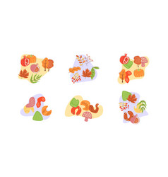 Foraging vegetables and mushrooms in autumn flat vector