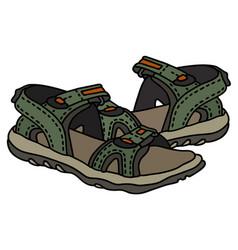 Green sport sandals vector