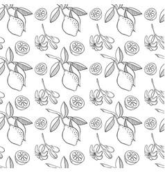 Sketched lemon seamless pattern vector