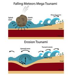 establishment of tsunami vector image