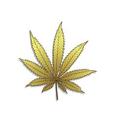 golden cannabis-marijuana vector image vector image