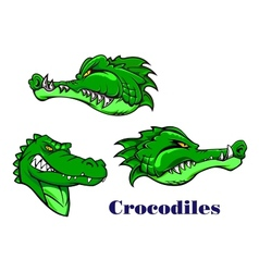 Cartoon crocodile and alligators characters vector image
