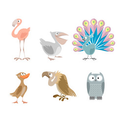 six funny birds vector image