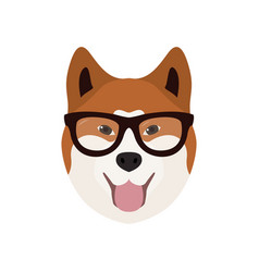 Akito inu in glasses cute dog vector