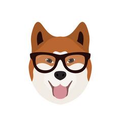 Akito inu in glasses cute dog vector